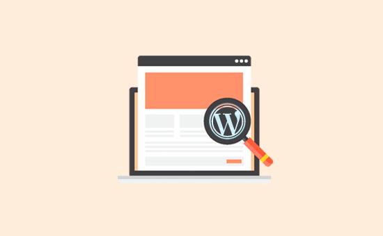 چگونه می توان فهمید یک سایت از چه قالب وردپرسی استفاده می کند؟